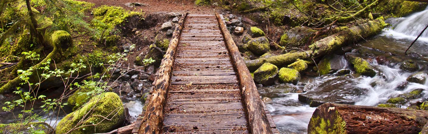 Hiking Trails Near Me Finding The Best Local Hikes