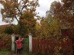 Familj söker boende i Bäck