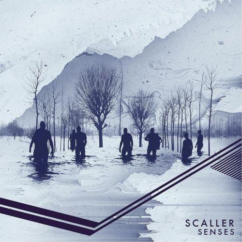 Scaller Senses