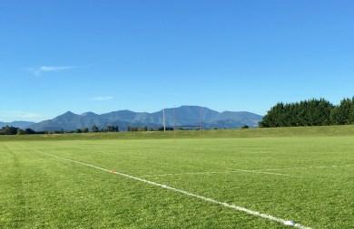 Harlequins training ground