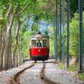 Ghid de comportament în tramvaiul bucureștean