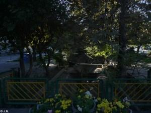 15_11_11-Iran_3-094