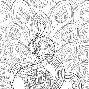 free coloring pages for adults printable # 11