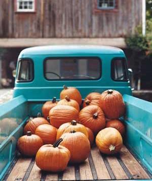 truck-pumpkin-1_300