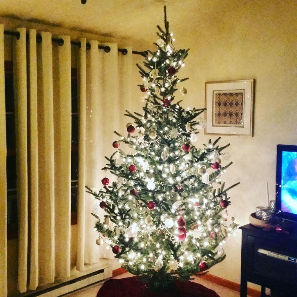 Hello-December_BackwardsNHighHeels 15