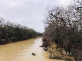 sharkey county ms land for sale