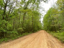 leake county ms land for sale