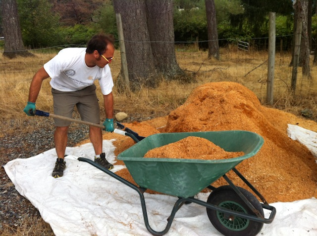 1 - sawdust