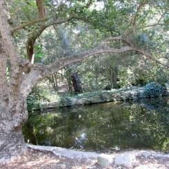 3 - descanso_gardens