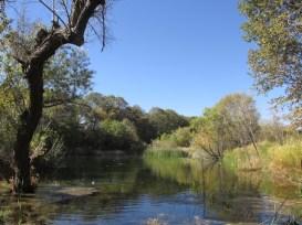 10 - wildlands_conservancy_oak_glen_california