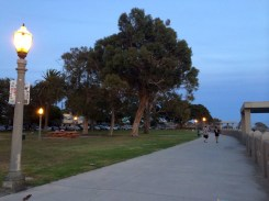 Point Fermin Park when the sun has set