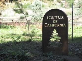 14 - wildlands_conservancy_oak_glen_california
