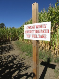 5 - oak_glen_california_corn_maze