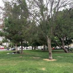 9 - echo_park_los_angeles_california