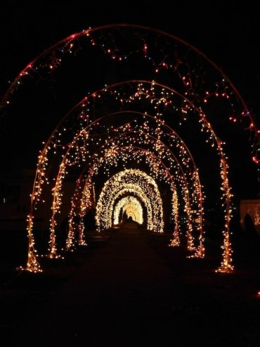 3 - yolanda_lights_reseda_los_angeles_christmas_lights
