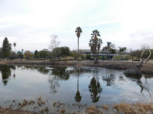la_brea_tar_pits_los_angeles_california1