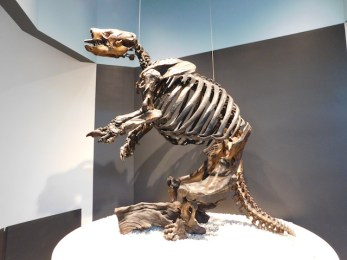Harlan's ground sloth