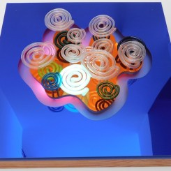 Focus on the Light by Linda Sue Price, 2009