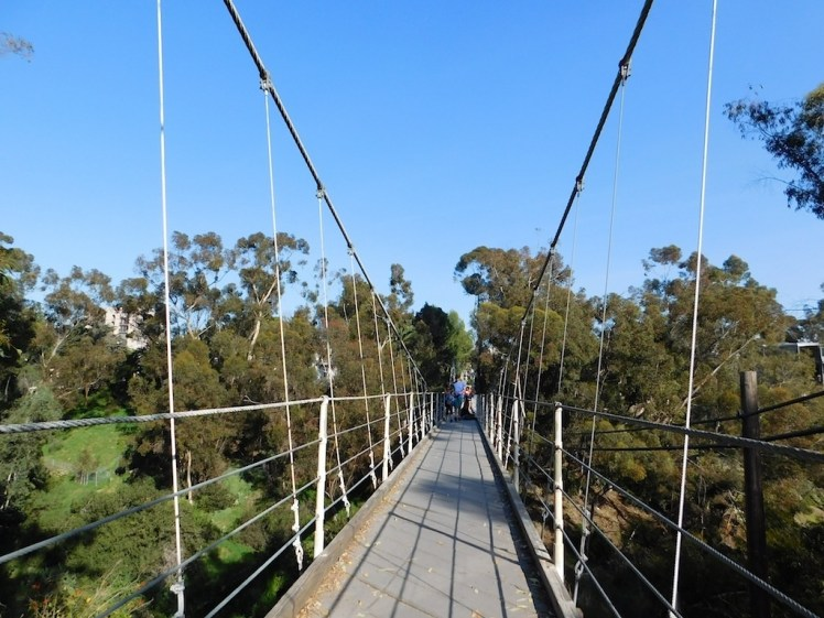 Spruce Street Suspension Bridge San Diego