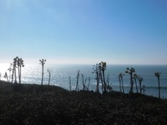 cabrillo_national_monument_park_service_san_diego9