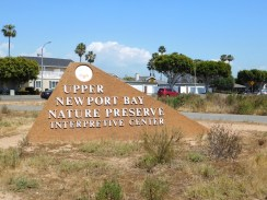upper_newport_bay_nature_preserve_orange_county13