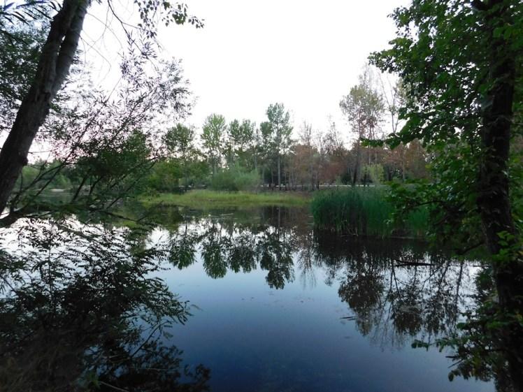 3-visit-boise-idaho-veterans-park