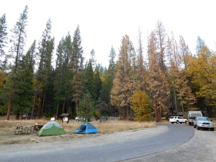 6-wawona-campground-yosemite