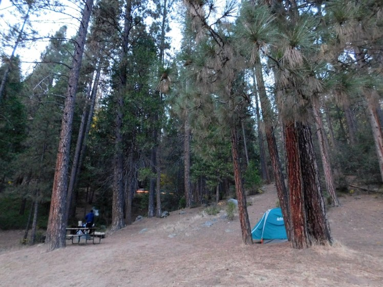 8-wawona-campground-yosemite
