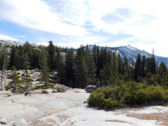 17-tioga-pass-yosemite-national-park