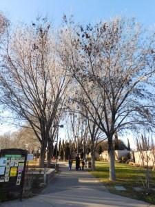 ABQ BioPark Botanic Garden, Albuquerque, New Mexico