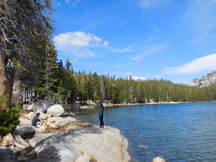Tioga Pass Yosemite National Park, Tenaya Lake