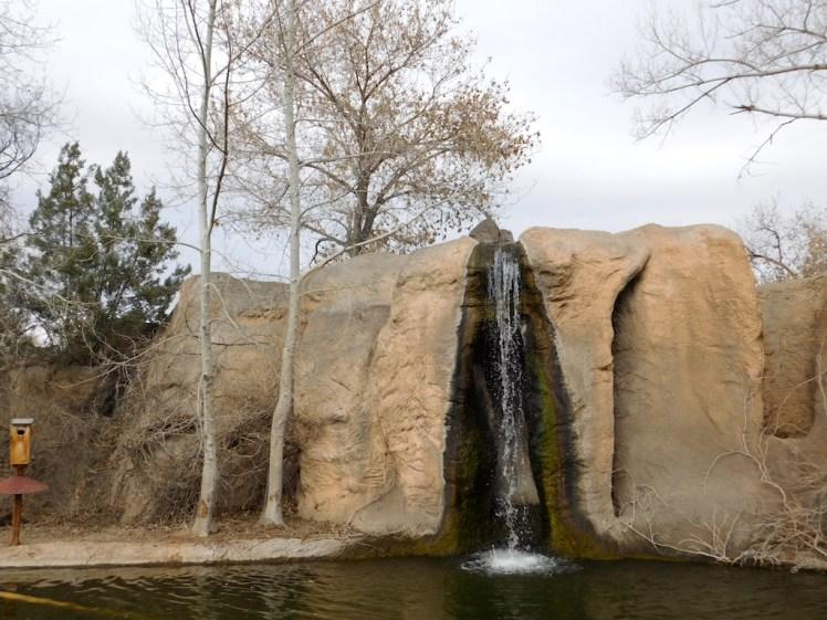 Albuquerque zoo