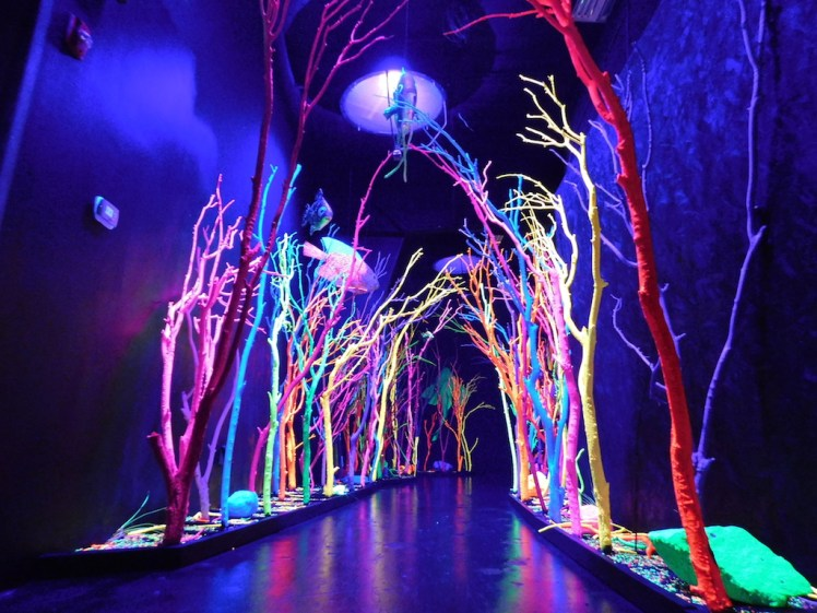 Meow Wolf House of Eternal Return, Santa Fe, New Mexico