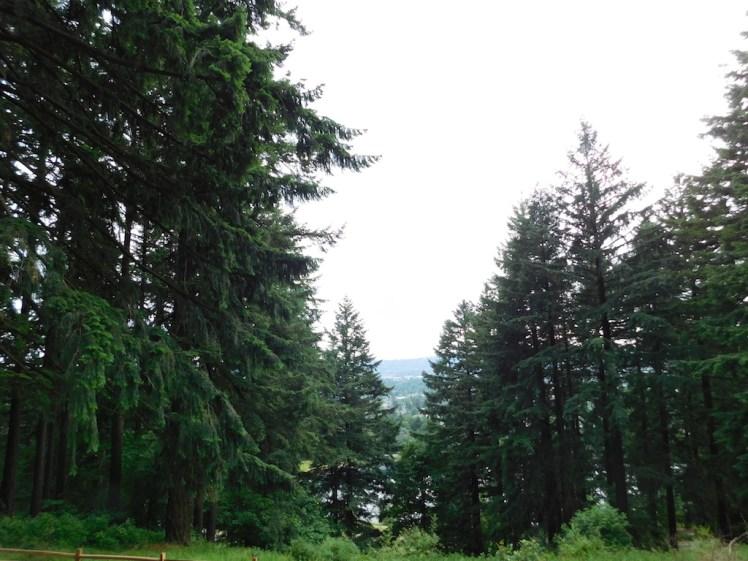 Mount Tabor Park, Portland, Oregon