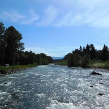Carbon River, Washington