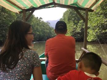 Mangrove Forest Tour, Puerto Princesa, Palawan