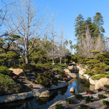 The Japanese Garden, San Fernando Valley, Los Angeles