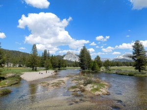 Soda Springs, Tuolumne Meadows, Yosemite National Park