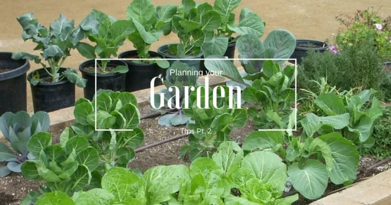 Planning your Garden Pt: 2
