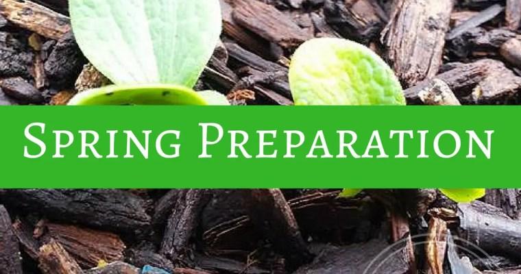 Spring Preparation