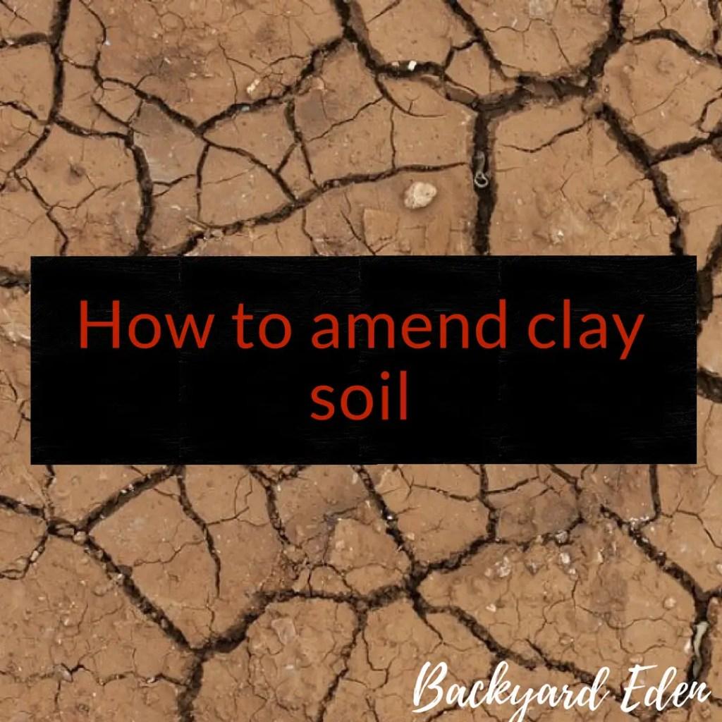 How to amend clay soil, clay soil, Backyard Eden, www.backyard-eden.com, www.backyard-eden.com/how-to-amend-clay-soil