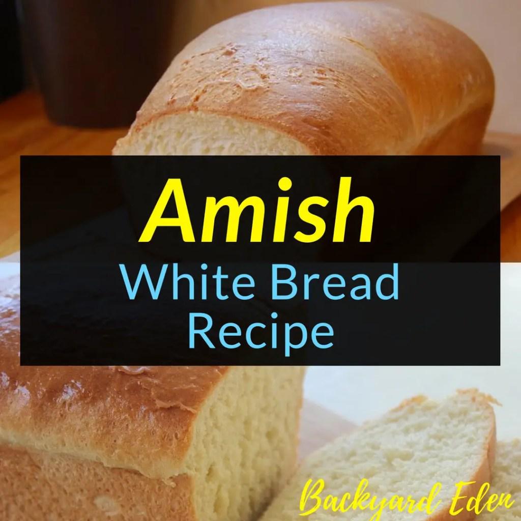 Amish White Bread Recipe, Bread Recipe, Homemade Bread Recipe, Backyard Eden, www.backyard-eden.com, www.backyard-eden.com/amish-white-bread-recipe