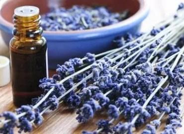 Lavender Sugar Scrub, sugar scrubs, facial srubs, Backyard Eden, www.backyard-eden.com, www.backyard-eden.com/lavender-sugar-scrubs