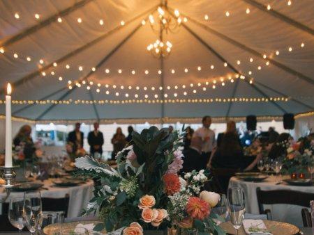 Wedding Planning - Tent Lighting Rental