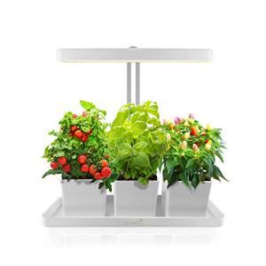 GrowLED LED Indoor Garden, Herb Garden, Kitchen Garden