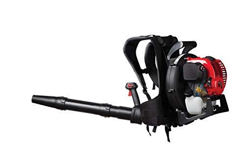 Craftsman 32cc, 4-Cycle Full-Crank Engine Backpack