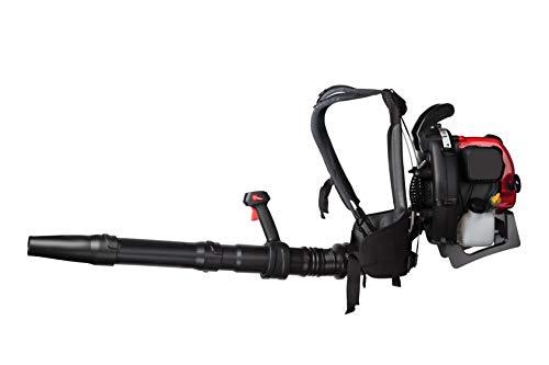 Craftsman 32cc, 4-Cycle Full-Crank Engine Backpack Craftsman BP410 32cc, 4-Cycle Full-Crank Engine Backpack Gas Powered Leaf Blower.