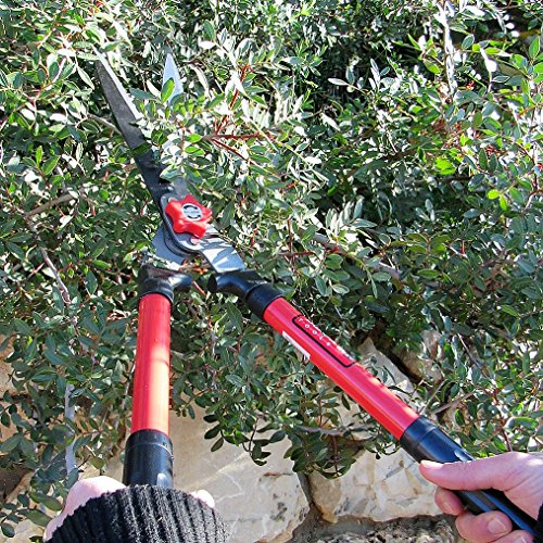 TABOR TOOLS Hedge Shears for Trimming Borders, Boxwood, and Bushes TABOR TOOLS Hedge Shears for Trimming Borders, Boxwood, and Bushes. 25 Inch Manual Hedge Clippers with Comfort Grip Handles. B620A. (Wavy Blade, Non-Extendable Steel Handles).