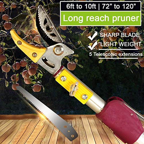 KSEIBI Telescoping Cut and Hold Long Reach Bypass Garden Pruner From The Manufacturing unit: