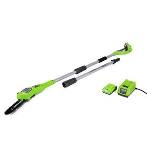 Greenworks 8.3' 24V Cordless Pole Saw, 2.0 AH Battery Included